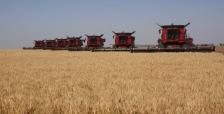 harvest-2011-0631